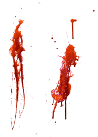 2 timen in glass blood free png download