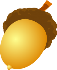 Acorn png drawn
