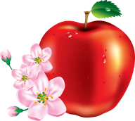 Apple png clipart with flower