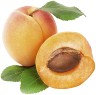 Apricot Fruit Png