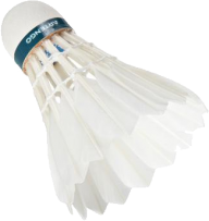 badminton PNG free download