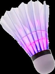badminton violet PNG