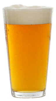 beer filled glass tumbler  free png download