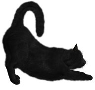 Black Cat Png Targeting