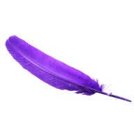 Blue Png image Feather