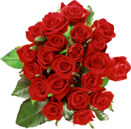 bokkay red rose with leaves free png download