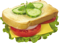 Burger Sandwich Free PNG Image Download 13