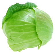Cabbage PNG free Image Download 25
