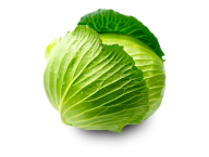 Cabbage PNG free Image Download 27