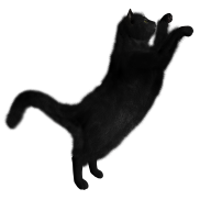 Cat Jumping over Png