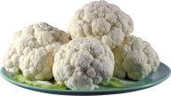 cauliflower PNG free Image Download 1