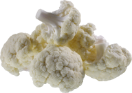 cauliflower PNG free Image Download 10