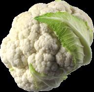 cauliflower PNG free Image Download 12