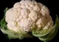 cauliflower PNG free Image Download 13