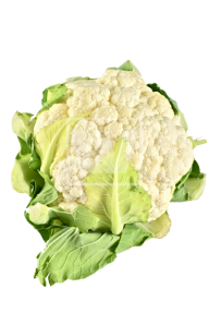 cauliflower PNG free Image Download 21