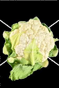 cauliflower PNG free Image Download 21