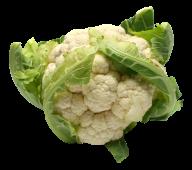 cauliflower PNG free Image Download 25