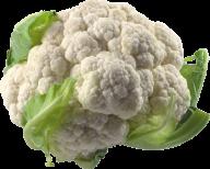 cauliflower PNG free Image Download 26