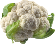 cauliflower PNG free Image Download 7