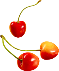 cherry png free download 11