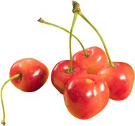 cherry png free download 22