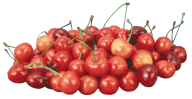 cherry png free download 26