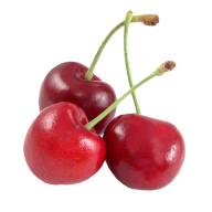 cherry png free download 29