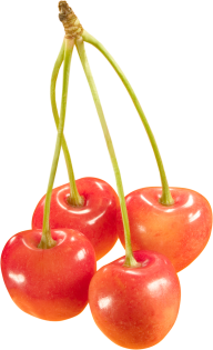 cherry png free download 8