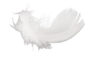 Cloud Like Feather Png