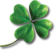 clover png free download 7