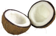 coconut png free download 11