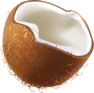 coconut png free download 12