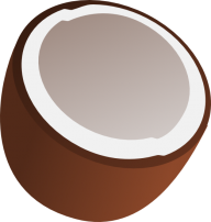 coconut png free download 24