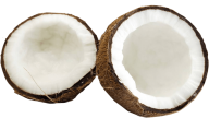 coconut png free download 29