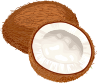 coconut png free download 30