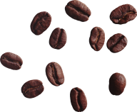 coffee beans png free download 1
