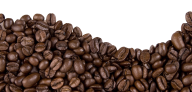 coffee beans png free download 11