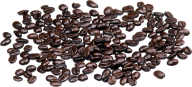 coffee beans png free download 17