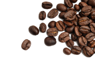 coffee beans png free download 18