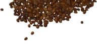 coffee beans png free download 26