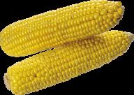 corn png free download 11