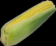 corn png free download 20