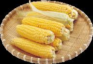 corn png free download 21