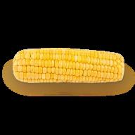 corn png free download 23