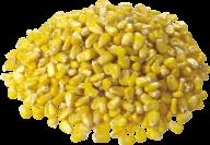 corn png free download 7