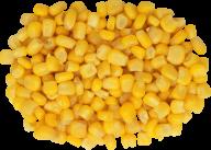 corn png free download 9