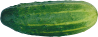 cucumber png free download 11