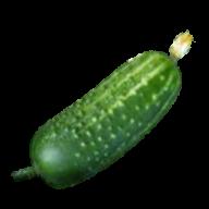 cucumber png free download 16