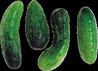 cucumber png free download 19