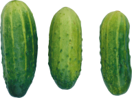 cucumber png free download 20